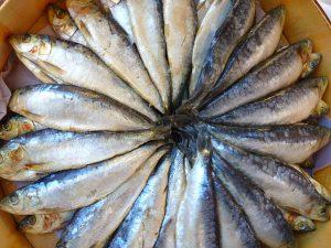 omega 3 fettsaeuren in fisch