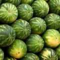Arginin, Wassermelonen, Blutdruck