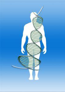 Genetische Veranlagung zu PCOS