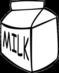Molke-Eiweiss Whey Protein und Diät