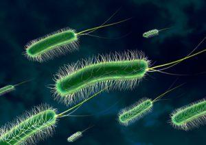 Immunsystem mit Vitaminen stärken