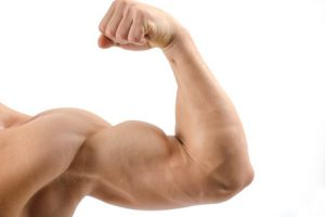 BCAA Muskelaufbau