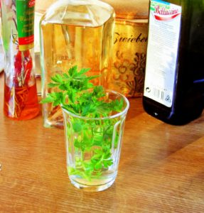 olivenblätter Extrakt