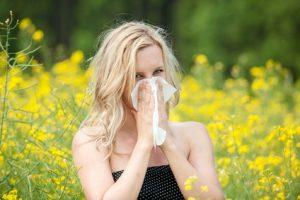 Wirkun von MSM bei Allergien