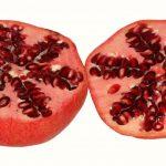granatapfel antioxidantien blutdruck ascorbinsäure