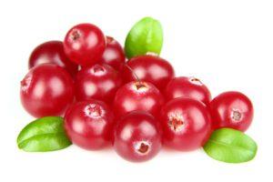 Immunsystem stärken mit cranberries